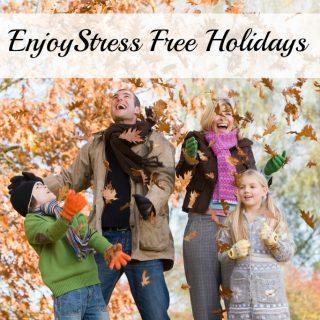 Enjoy Stress Free Holidays This Year