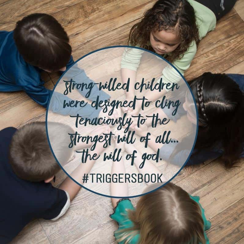 triggers-book-angry reactions-siblings-fighting-how to fix