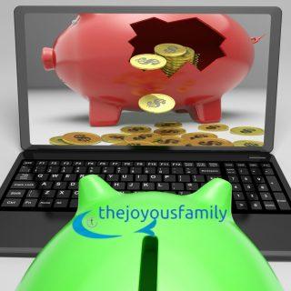 Mint.com Free Money Management Software for Dummies