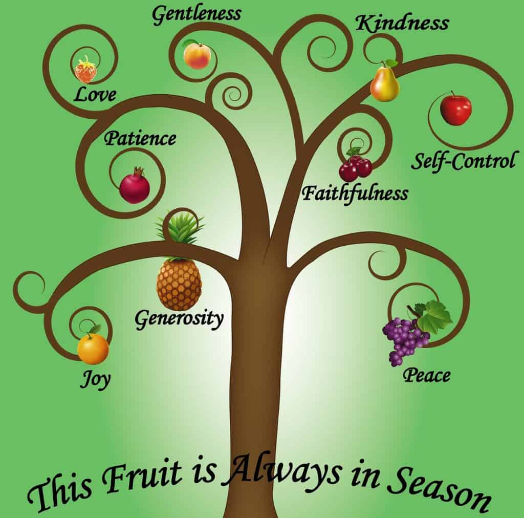 Daily Serenity Step 10 Fruits of the Spirit